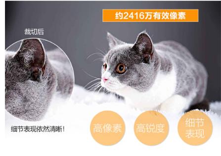 尼康(Nikon)D7200 单反相机套机 照相机 尼康18-140 f/3.5-5.6G ED VR_http://www.chuangxinoa.com/img/sp/images/201805291438034730001.png